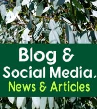 Kings Barn Trees News, Articles & Blog